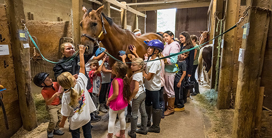 Children attend the Town of Islip Equestrian Camp groom one of the horses
