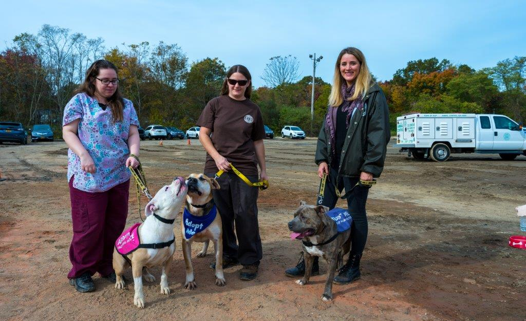 3 DEC staff pose for a photo holding 3 dogs, who will have a new home in the new shelter.