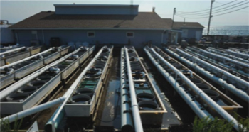 An image of the outside of the shellfish facility, with rows of cultivation equipment in the foreground.