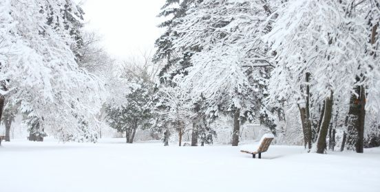 snowy park and bench