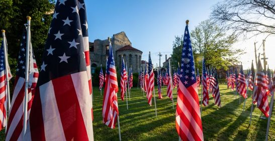 Rows of Flags on a green lawn, the golden sun setting between them casting long flow shadows